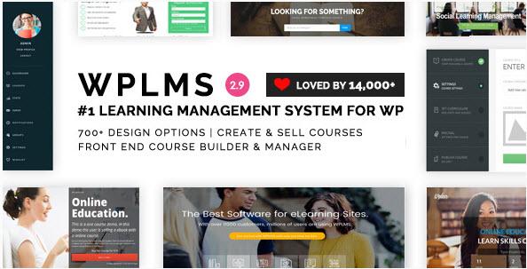 10 theme được sử dụng nhiều nhất khi làm website