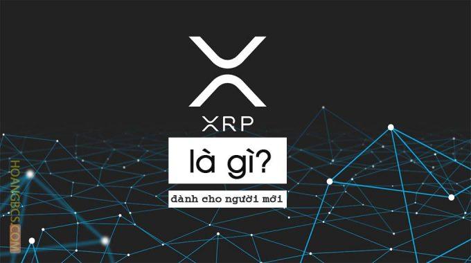Ripple XRP là gì? đồng tiền điện tử trong lĩnh vực tài chính